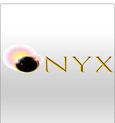 Onyx Softball Bats