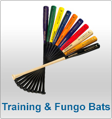 Training and Fungo Bats